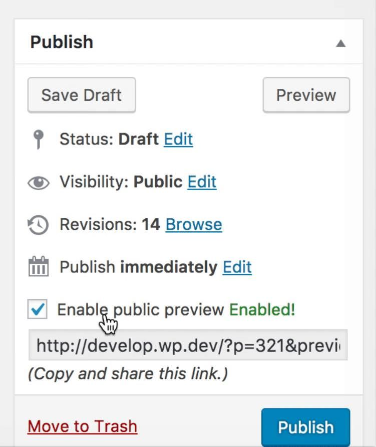 Preview publicly using Public Post Preview