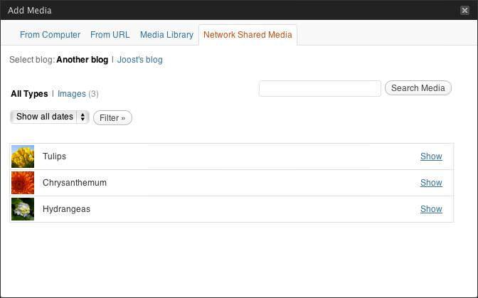 Network Shared Media allows sharing sub-blog media