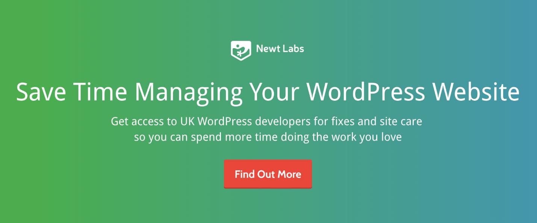 wordpress site care
